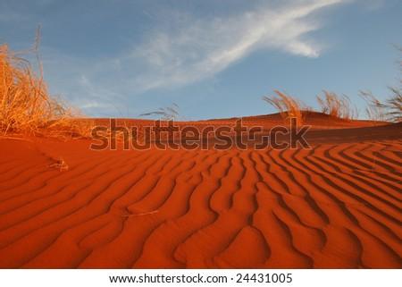Red Dunes of Sossuvlei.Namibia - stock photo