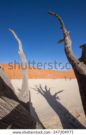 red dunes of the Namib desert and the dead trees of deadvlei pan in Naukluft Park, Namibia, Africa - stock photo