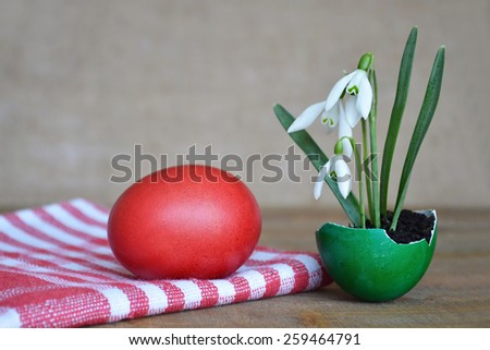 Red easter egg and snowdrops on wooden table - stock photo