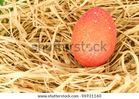 red easter eggs in nest egg