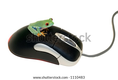Red Eyed Tree Frog on Computer Mouse - stock photo