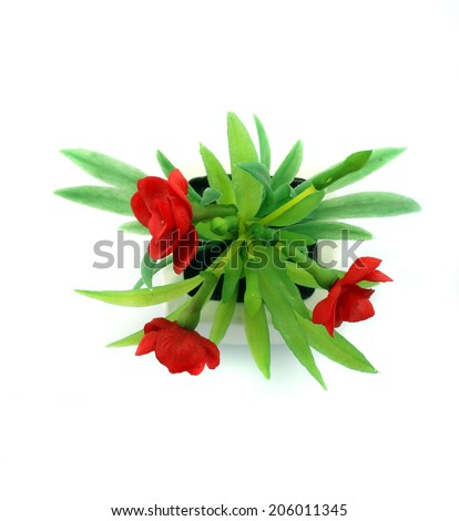 Red fake flowers in the vase on white background