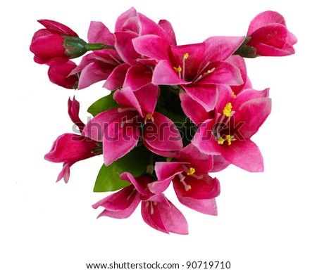 red  fake flowers is isolated on a white  (top view) - stock photo