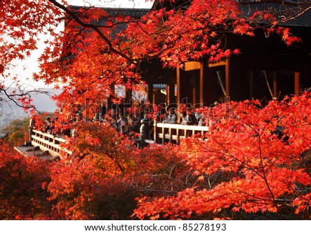 Red fall leaves at Kiyomizu-dera temple in Kyoto, Japan, with onlookers in the background - stock photo