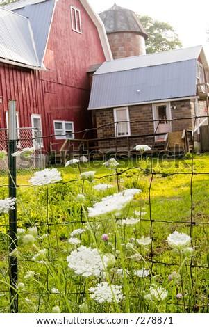 red farmhouse - stock photo