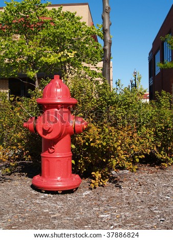 Red fire hydrant on bark ground cover, next to a shopping center in front of a bush that is starting to show fall colors. - stock photo