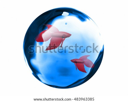 red fish and water 3D illustration