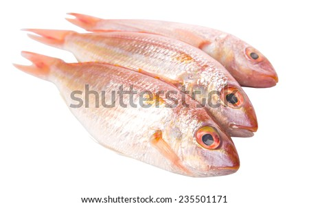 Red fish over white background - stock photo