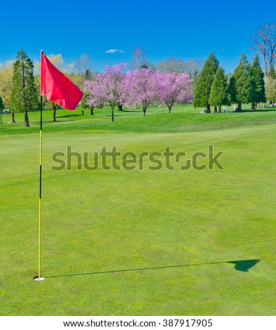 Red flag at the golf course - stock photo
