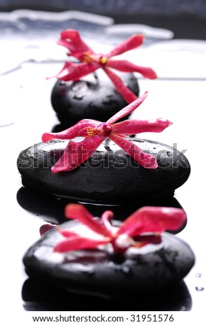Red flower and spa stones