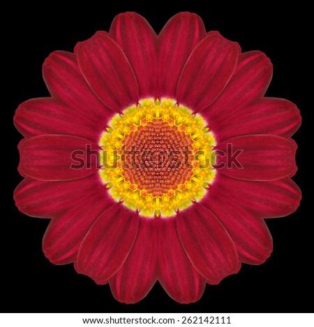 Red Flower Mandala. Kaleidoscopic design Isolated on Black Background. Mirrored pattern - stock photo
