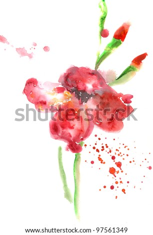 Red Flower on White - stock photo