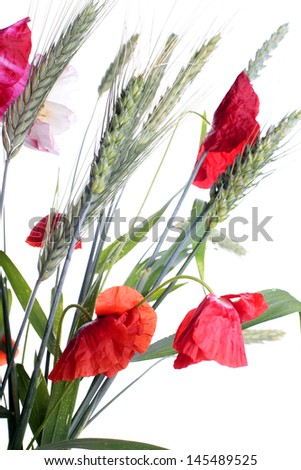 Red flower summer bouquet - stock photo