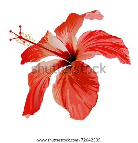 red flower vector art - stock photo