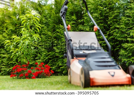 Red flowers in garden with green thujas background and Old red electric lawn mower standing on freshly cut green grass. Focus on red flowers - stock photo