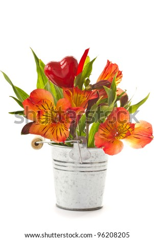 red flowers of Alstroemeria in a bucket on a white background - stock photo