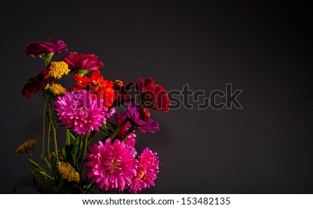 Red flowers on a dark background