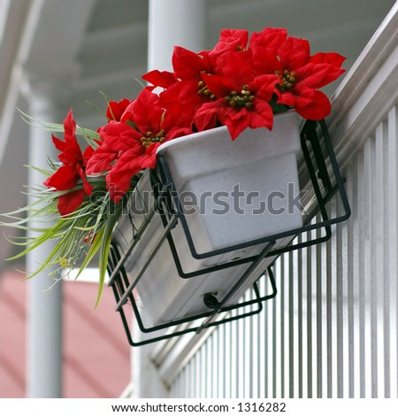 Red flowers on white porch - stock photo