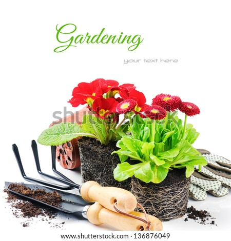 Red flowers with garden tools isolated over white
