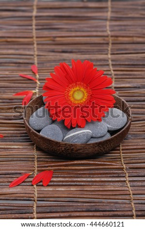 Red gerbera with gray stones in bowl on mat, petals   - stock photo
