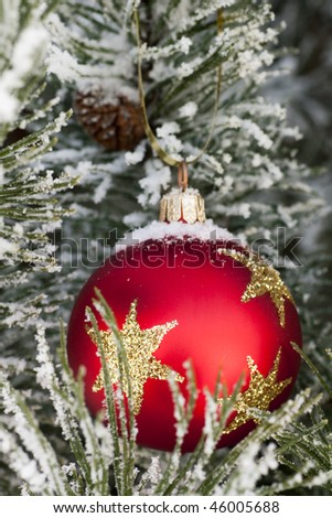 Red glass Christmas bauble on a snow encrusted tree - stock photo