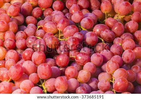 Red grapes background/ dark grapes