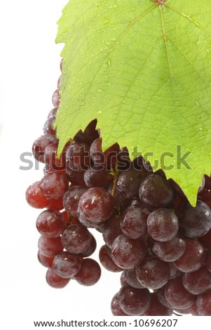 Red grapes with grapeleaf on a bright background - stock photo