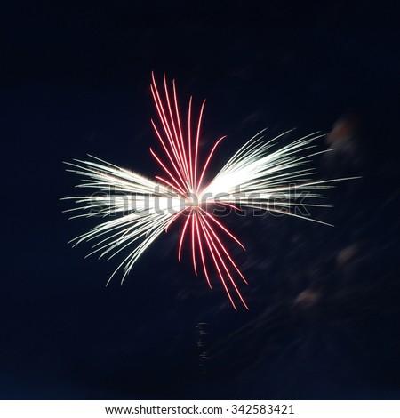 Red Green Single Burst Firework - stock photo
