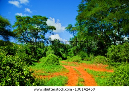 Red ground road and bush with savanna landscape in Africa. Tsavo West, Kenya. - stock photo