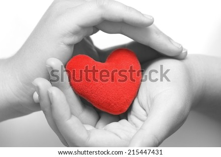 Red heart in gentle hands.