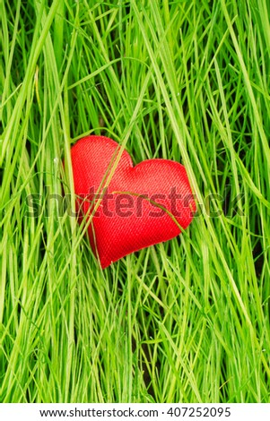 Red heart on a background of green grass - stock photo