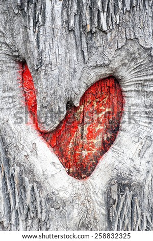 Red heart on cracked mossy tree bark. Symbol of true love - in sickness and in health, in good times and in bad, and in joy as well as in sorrow - stock photo