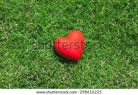 Red heart on green grass  - stock photo