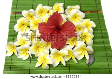 Red hibiscus and many frangipani and stone on green mat