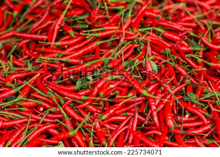 RED HOT CHILI IN GROUP MANY PATTERN  - stock photo