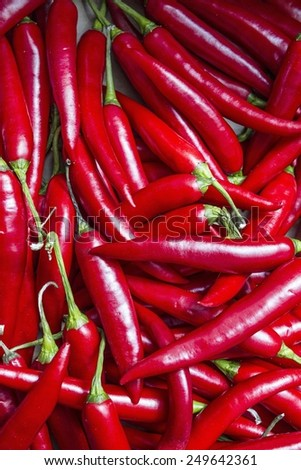 Red hot chilli peppers, in a market of London - stock photo