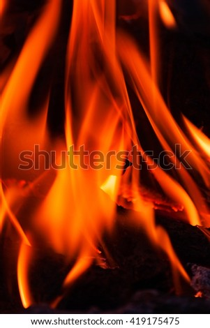 red hot fire. burning woods