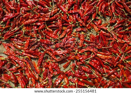 Red hot spicy chillies pepper background - stock photo