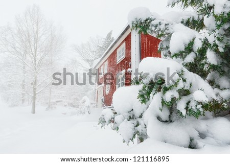 Red house in snowfall with evergreen trees - Sweden - stock photo