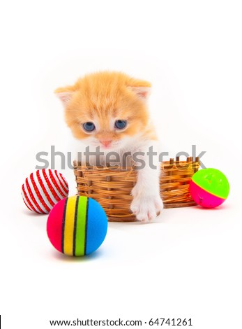 Red kitten in a wattled basket with multi-colored balls - stock photo