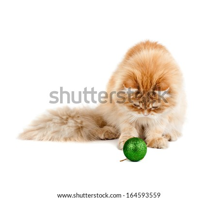 red kitten sitting plays new year's green ball isolated