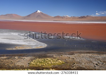 red lagoon with mountain peak in bolivia desert