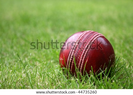 Red leather cricket ball on grass - stock photo