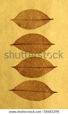 Red leaves skeletons over gold background - stock photo