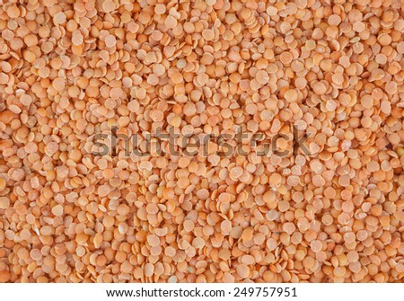 Red lentil background - stock photo