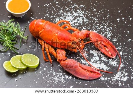 Red lobster on black slate tray - stock photo