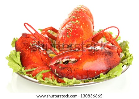 Red lobster on platter with vegetables isolated on white - stock photo
