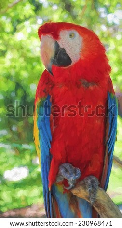 red macaw, paint brush effect - stock photo