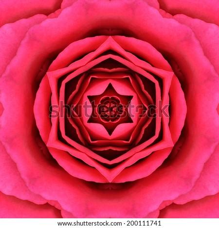 Red Mandala Concentric Rose Flower Kaleidoscope Center. Kaleidoscopic Design Pattern - stock photo