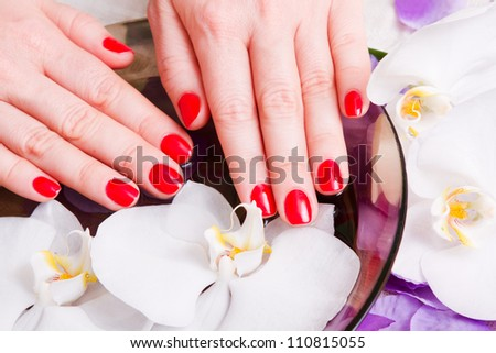 red manicure on female hands closeup - stock photo